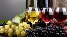 Гагаузия будет поставлять вино в Туркменистан