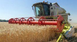 РФ: Минсельхоз рассчитывает на урожай в 100 млн зерна в 2017 году