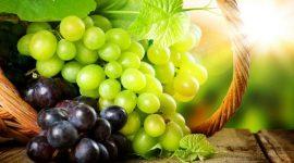 В Россию не впустили 40 тонн турецкого винограда из Молдовы