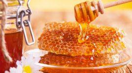 Молдова экспортирует более 70% произведенного в стране меда