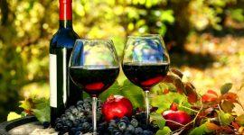 Список экспортеров молдавского вина и фруктов в Россию будет расширен