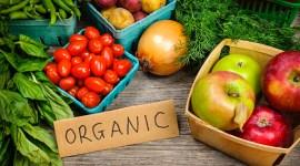 Обработка и маркировка экологических (органических) сельскохозяйственных продуктов