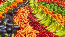 Агроэкология поможет изменить мировое производство продовольствия в лучшую сторону