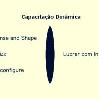 Você precisa conhecer capacitação dinâmica