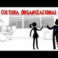Conheça a Cultura organizacional e o Clima organizacional