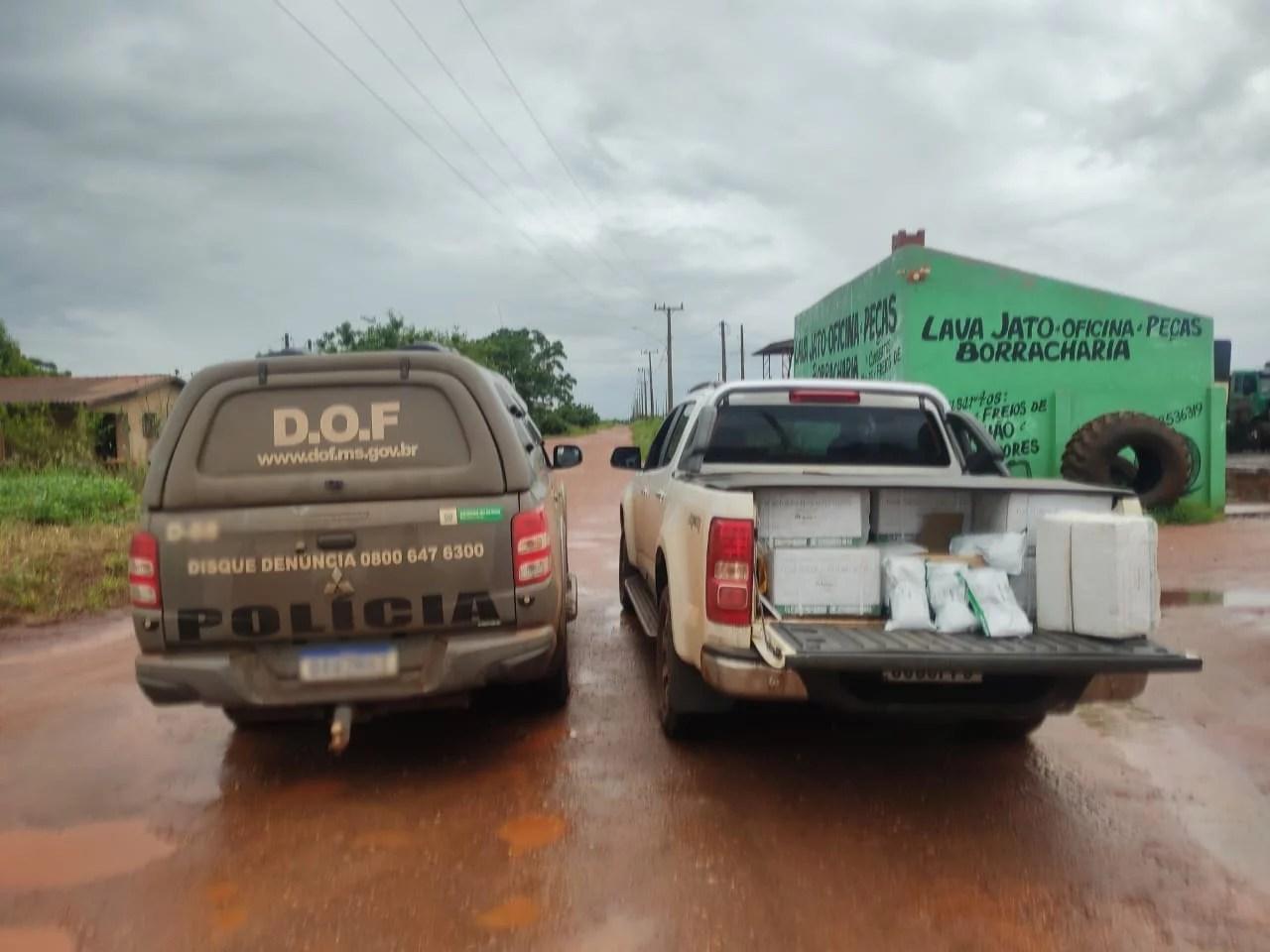 Camionete com 250 quilos de agrotóxicos foi apreendida pelo DOF durante a Operação Hórus
