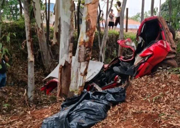 Mulher morre após colisão de veículo contra árvore na rodovia PR-492