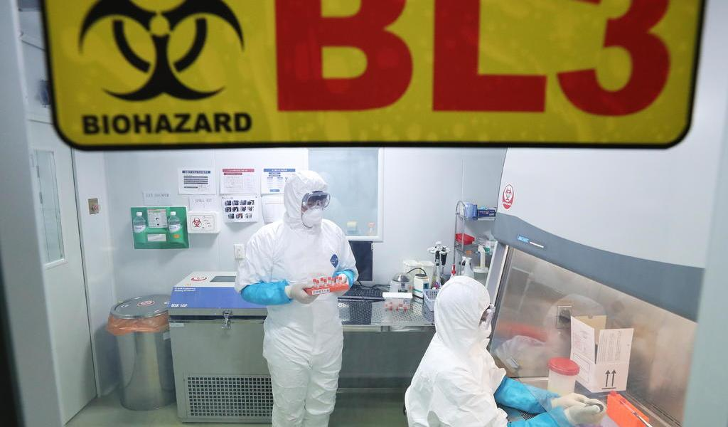 Identifican virus como causa de brote