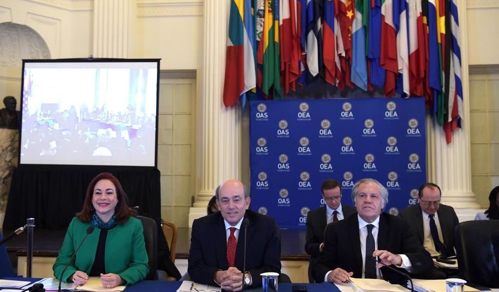 Llegan las elecciones de la OEA; conoce a los candidatos