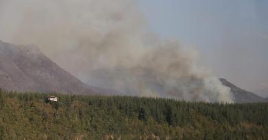 Incendio cerca de parque nacional, uno los más grandes de la historia de Chile