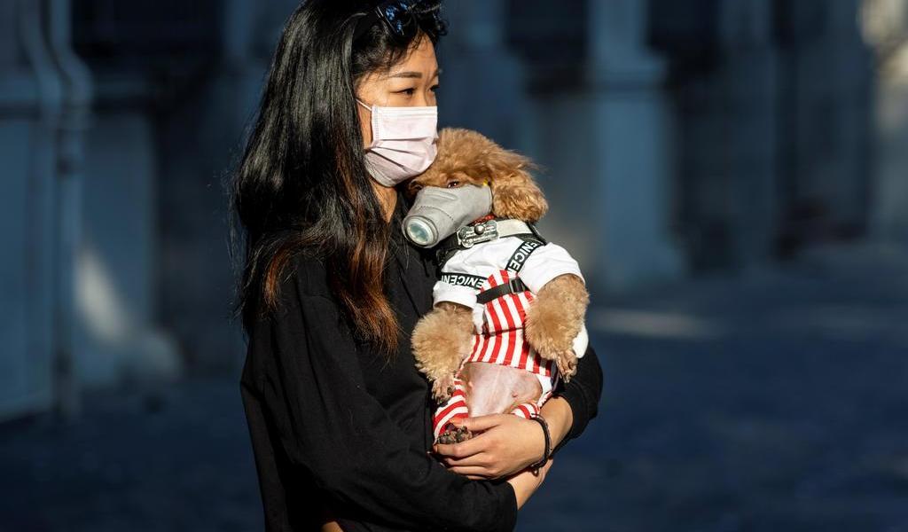 China eleva a 2,345 los muertos y a 76,288 los infectados por COVID-19