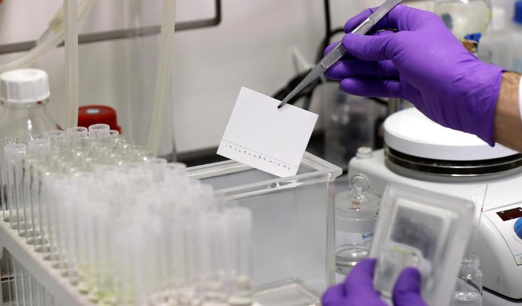 Científicos cuestionan precisión de pruebas rápidas del coronavirus