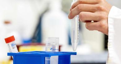 Se disculpa OMS por confusión en torno a tratamientos con hidroxicloroquina