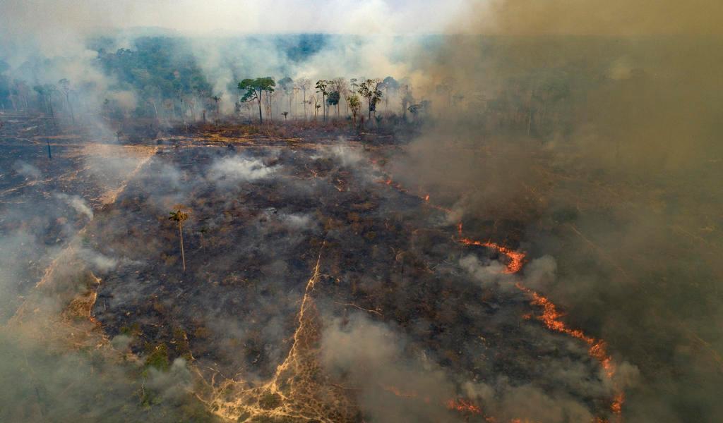 Incendios en la Amazonía registran el segundo mayor número en 10 años