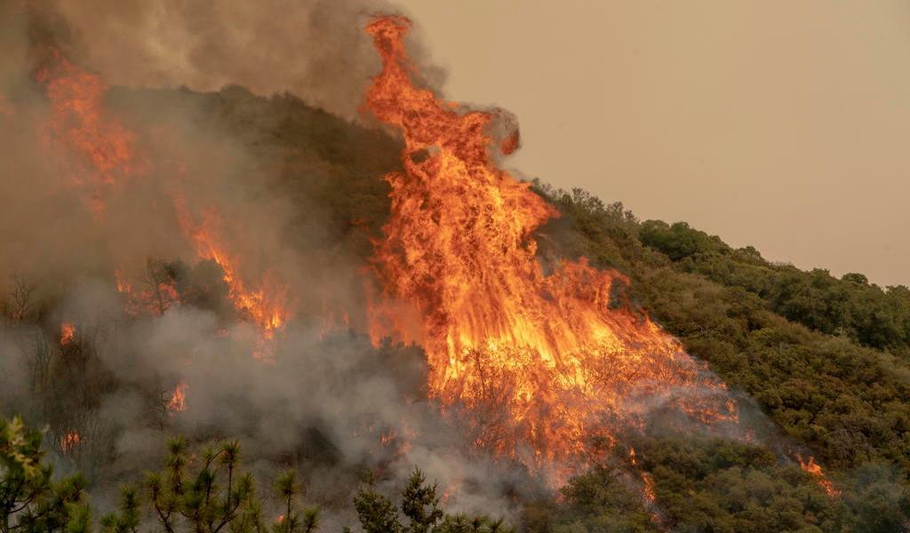 Suma medio millón de evacuados en Oregón; las llamas se acercan a Portland