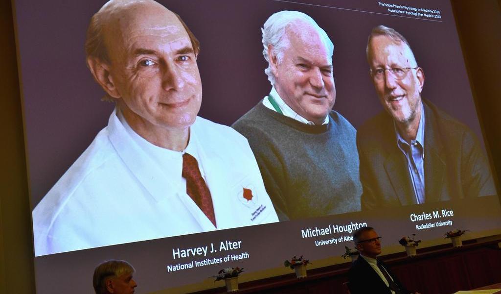 Nobel de Medicina a virólogos por descubrir el virus de la hepatitis C