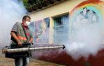 Dengue, la otra crisis que embarga a Latinoamérica