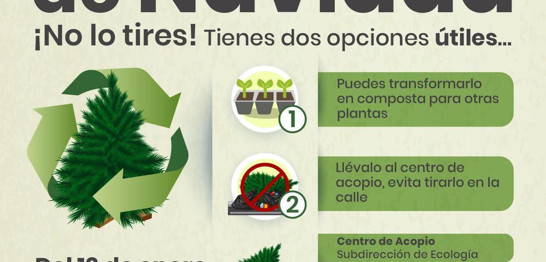 Fortalece  Pedro Joaquín acciones sustentables por un mejor Cozumel