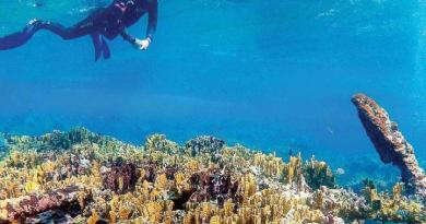Hallan vestigios de naufragio bicentenario en Quintana Roo
