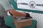 Pide Bonilla quitar permiso a empresa de paquetería por tráfico de drogas