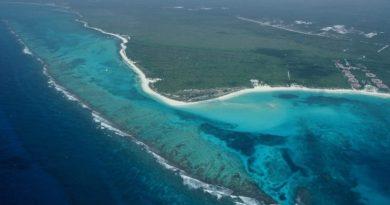 Tiene Q. Roo más de 150 kilómetros de ecosistemas costeros asegurados