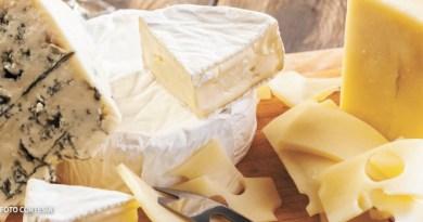 Suspenden venta de pseudo quesos en Yucatán y Quintana Roo
