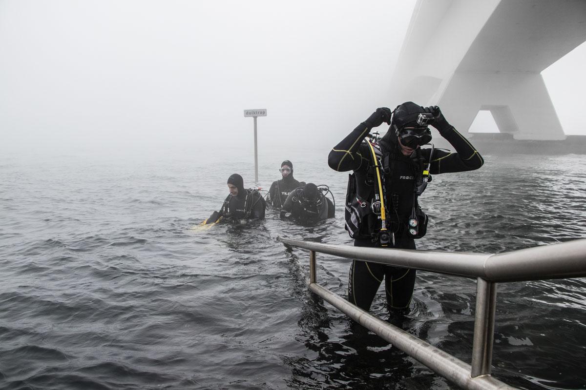 duiker duiken zeelandbrug zeeland fotografie