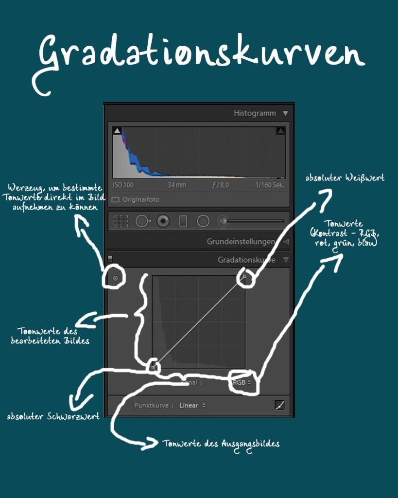 Gradationskurven verstehen und verwenden - Lightroom Photoshop GIMP