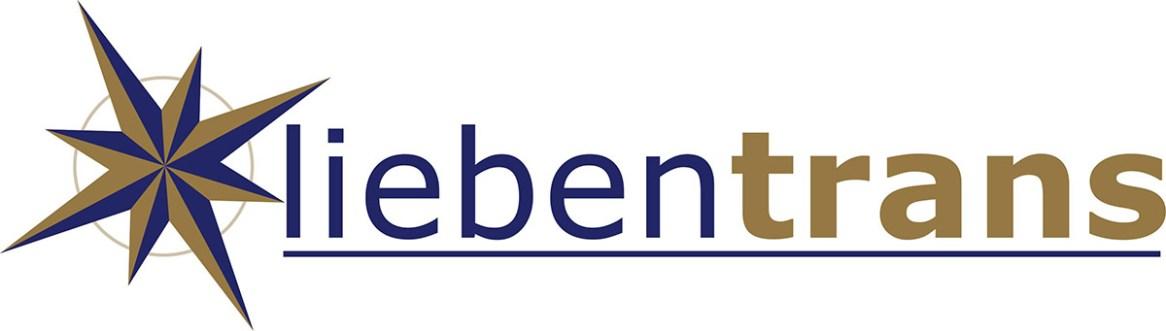 1. LT logo