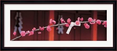 kitano-tenmangu-kyoto-japan-framed-art-print