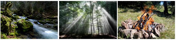 Ritualstelle im Wald