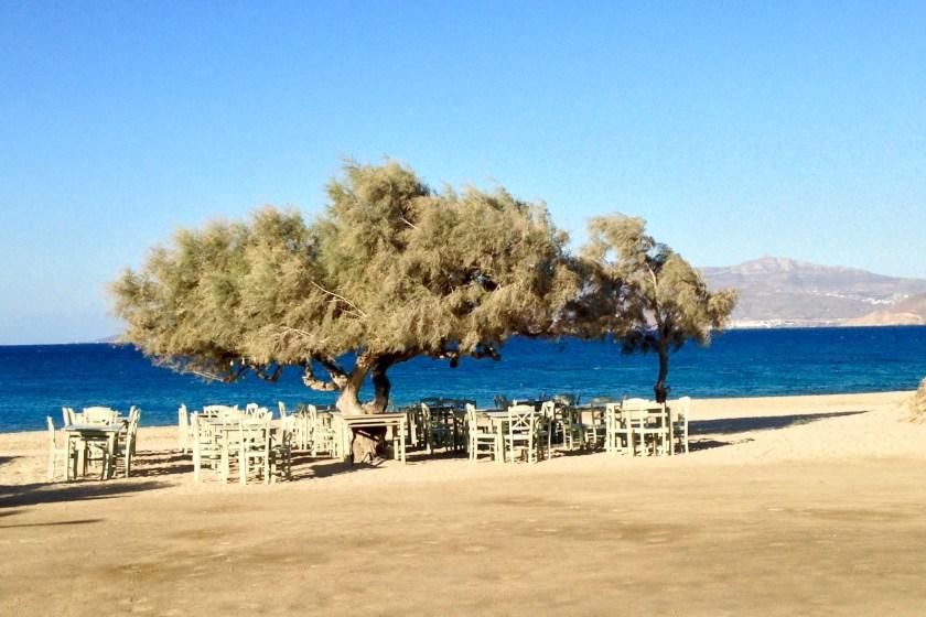 Paradiso Taverne auf Naxos