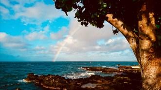 Hilo Big Island