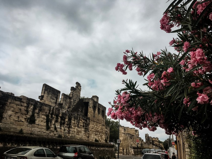 Stadtmauer von Avignon