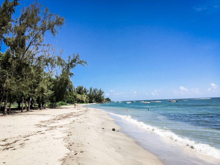 Wild Beach Tamarin