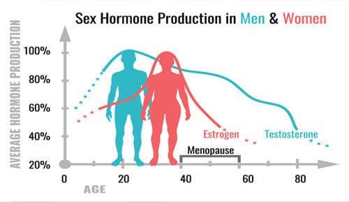 Tetsoteronspiegel en leeftijd grafiek