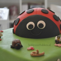 Een lieveheersbeest op je taart!