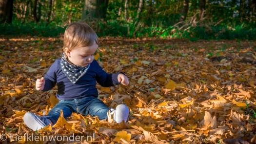 10 maanden en 1 week oud herfst bladeren fotoshoot