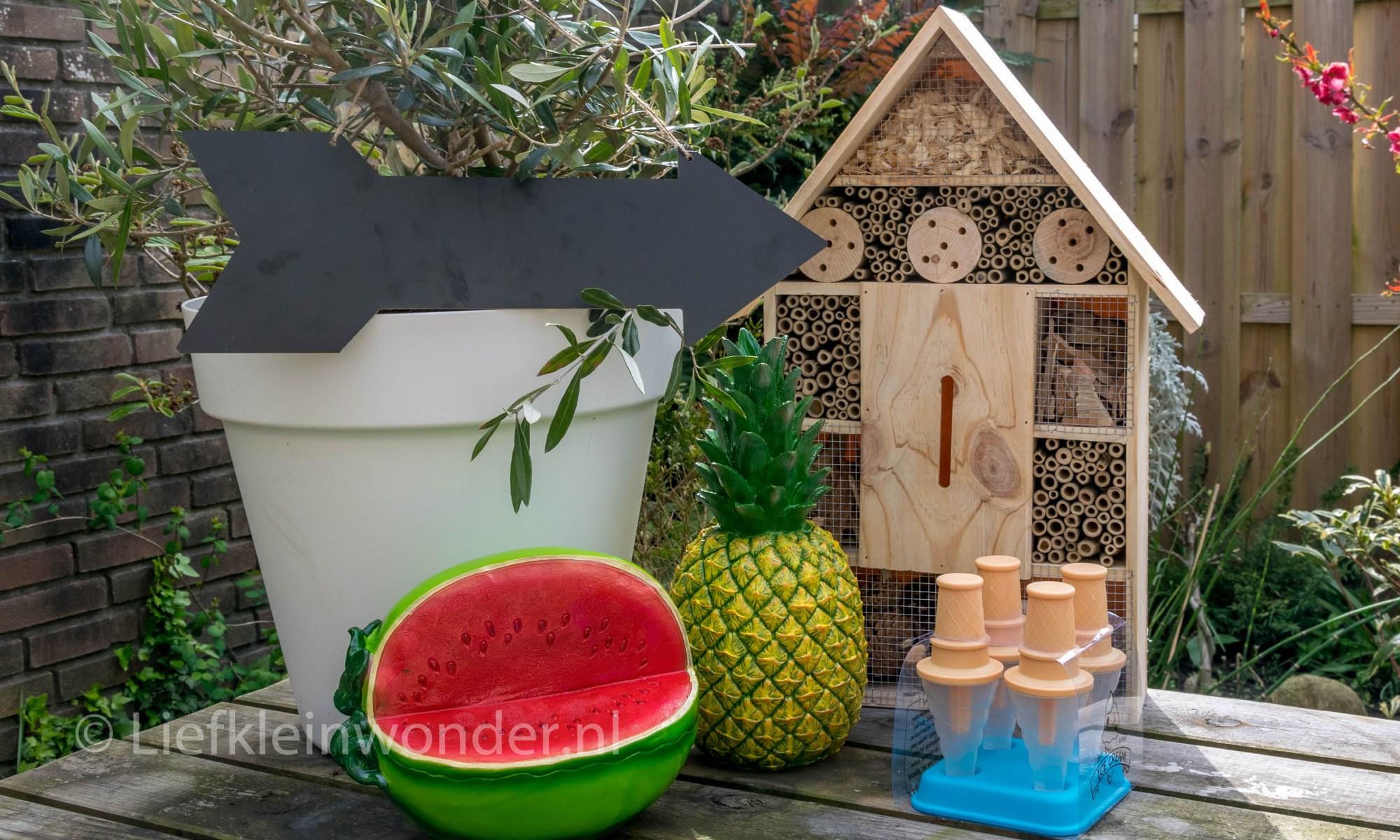 Action aankopen: bloempot, decoratie ananas en watermeloen, insectenhotel, krijtbord pijl, ijslolly vorm
