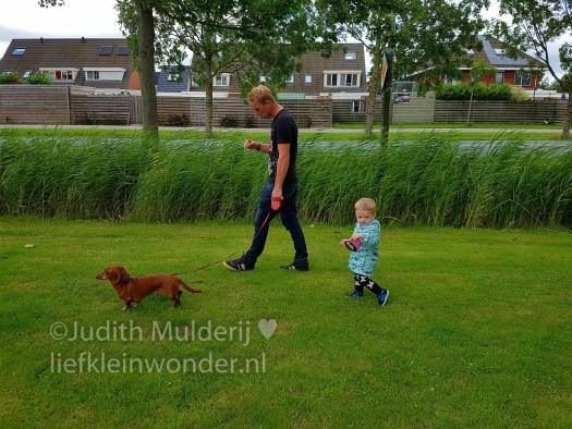 """Jayden 19 maanden oud dreumes peuter - """"Helemaal zelf"""" de hond uitlaten teckel"""