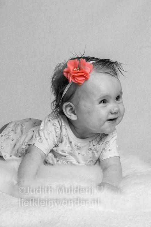 Jayden 18 maanden en 3 weken oud peuter dreumes - Fotoshoot baby van vrienden Chayenne