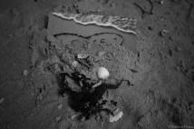 kaart in het zand, zeeland copyright