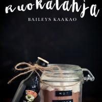 RUOKALAHJA IDEA - BAILEYS KAAKAO
