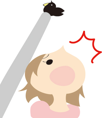【心理テスト】カラスに落とされた…!?