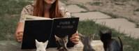 ネコ好きが選ぶネコ雑誌&ムックランキング