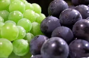 350 ブドウ フルーツ 果物