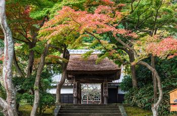 秋の鎌倉 円覚寺 居士林
