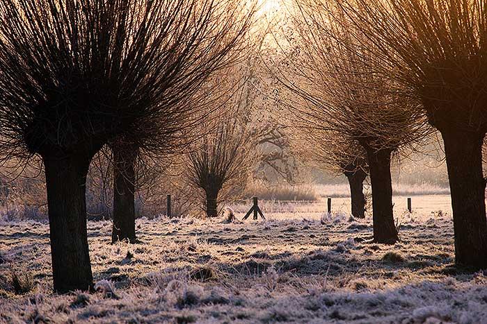 Winters landschap tijdens zonsopgang