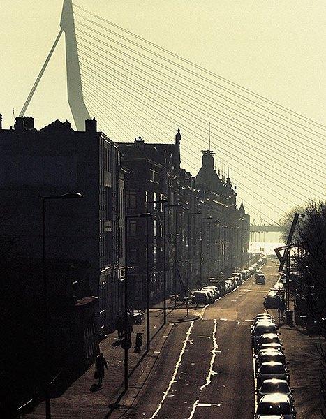 Het Noordereiland vanaf de Willemsburg met verder de Erasmusbrug in beeld.