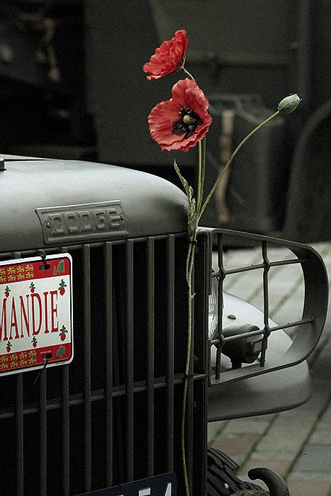 Bloemen op een oorlogsvoertuig bij een zes woorden verhaal over bloemen